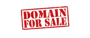 Premium Domain Name Seller